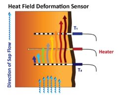 Heat Field Deformation Sensor